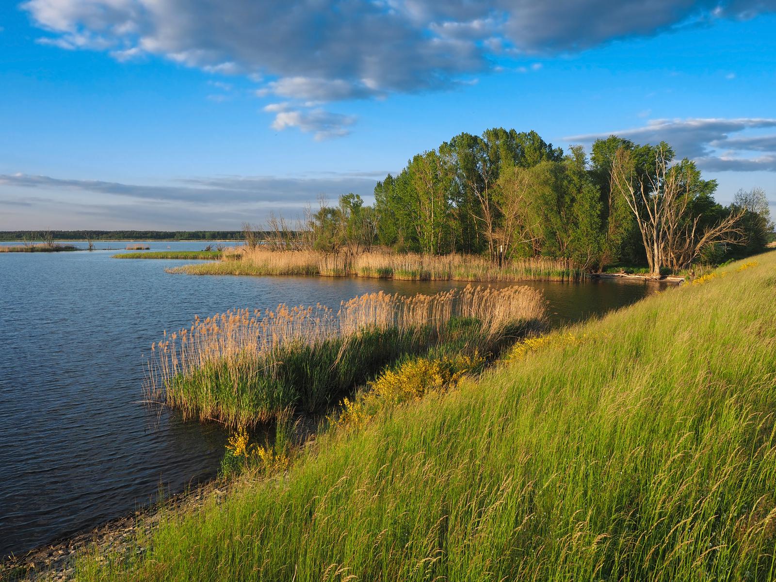 4. Jezioro Turawskie Duże.jpeg