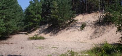 Ścieżka przyrodnicza w miejscowości Dąbrówka Łubniańska