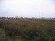 teren Luboszyce_3.jpeg