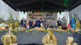 Galeria NKD -- Sosnówka