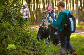 Galeria Sprzątanie Bajkowy Las