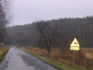 teren Dąbrówka Łubn_2.jpeg