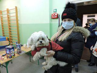 Kobieta z psem - uczestnicy biegu Rusz się dla serca